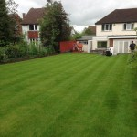Garden Maintenance, Elstree
